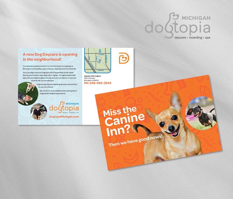 Dogtopia direct mail